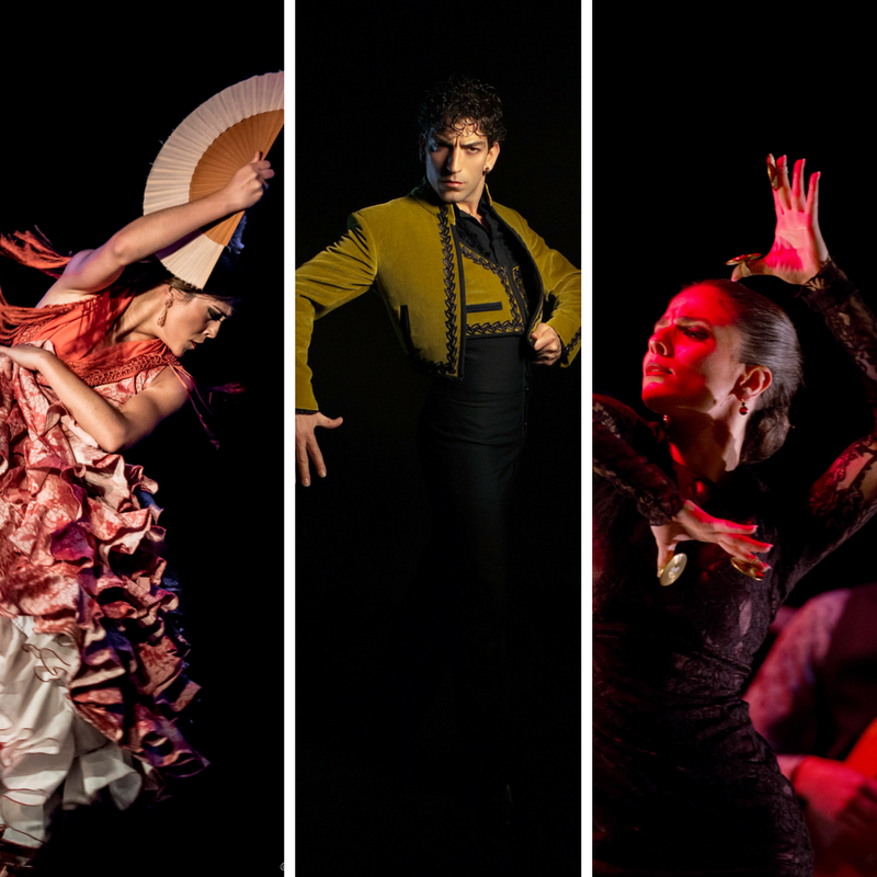 http://ibericacontemporanea.com.mx/wp-content/uploads/2017/05/JUEVES_27_JULIO_GALA_FLAMENCA.png